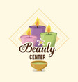 colorful logo of beauty center with set of candles vector image vector image