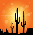 desert and cactus vector image vector image