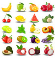 juicy ripe pomegranate vector image