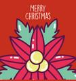 merry christmas celebration flower poinsettia vector image