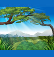 nature scene with trees on mountains vector image vector image