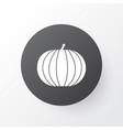pumpkin icon symbol premium quality isolated vector image