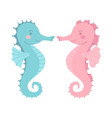 cute seahorse couple blue pink cartoon vector image