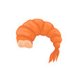 flat icon of boiled prawn without head vector image