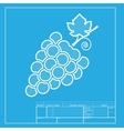 Grapes sign White section of icon on vector image vector image