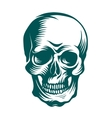 hand-drawn art a skull vector image