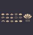 lotus logo set yoga meditation wellbeing vector image