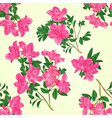 seamless texture pink rhododendron twig vector image vector image