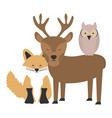 cute fox and reindeer and owl woodland characters vector image