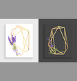 geometric frame polyhedron abstract gold floral vector image