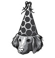 monochromatic silhouette simple head baby dog vector image