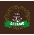 organic food product vector image vector image