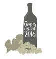 Wine bottle with a grapevine Grapes festival vector image vector image