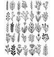 0112 hand drawn flowers doodle vector image vector image