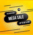 big sale banner one day special offer mega sale vector image