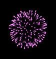 firework pink bursting isolated background vector image
