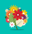 flowers bouquet colorful flat design spring vector image vector image