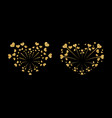 heart fireworks gold set isolated vector image