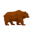 stylized of bear woodland forest vector image vector image