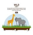 wild spirit animals vector image vector image