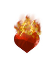 burning heart with fire flame vector image