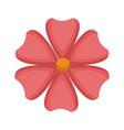 flower petals nature beauty decoration vector image