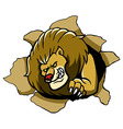Lion Tear The Paper vector image vector image