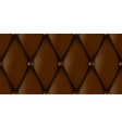 luxury leather upholstery vector image