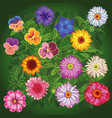 set wildflowers top view vector image vector image