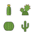 wild cactus color icons set vector image vector image