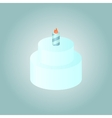 Birthday cake whith burning candle vector image
