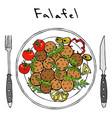 falafel arugula herb leaves lemon tomato on vector image vector image