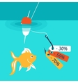 Fish on the hook Discounts and sales vector image vector image