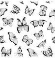 hand drawn insects pattern or background vector image vector image