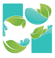 water and leaves vector image vector image