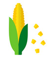 whole ears corn with leaves icon flat isolated vector image vector image