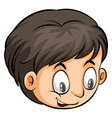 A head of a boy vector image vector image