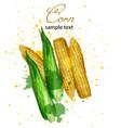 corn watercolor delicious colorful designs vector image vector image