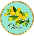 Olive branch badge vector image vector image