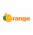 orange combined with text vector image vector image