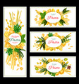 pasta with spices banner for italian food design vector image vector image