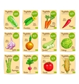Vegetables price cards farm organic set vector image