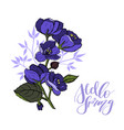 beautiful bouquet with viola and leaves vector image vector image