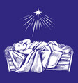 christmas story night baby jesus vector image