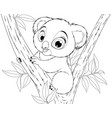 funny little koala bear baby vector image vector image