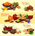 hot spice banner of natural food ingredient vector image
