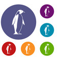 king penguin icons set vector image