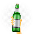 large beer bottle in hand vector image vector image