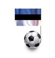 Soccer Balls or Footballs with flag of Estonia vector image vector image