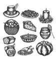 thanksgiving doodles set of symbols - turkey vector image vector image